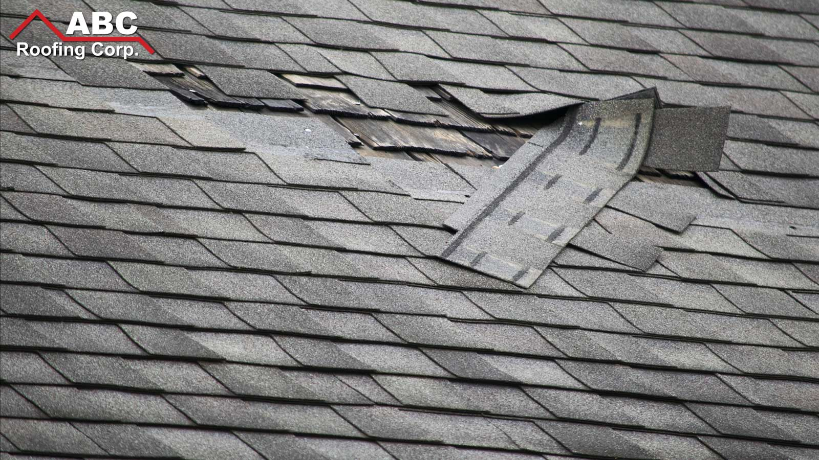 hurricane roof services