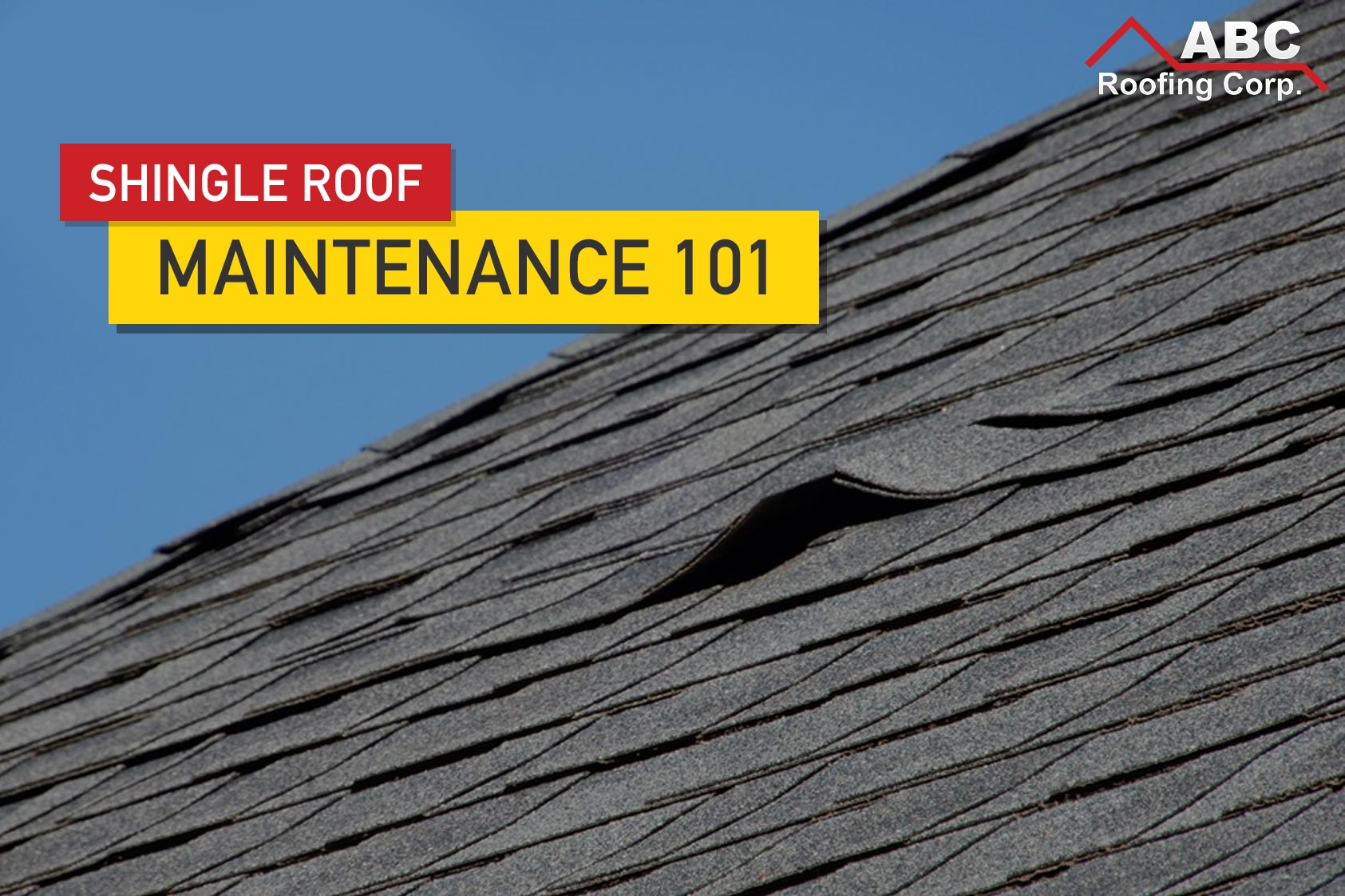shingle roof maintenance