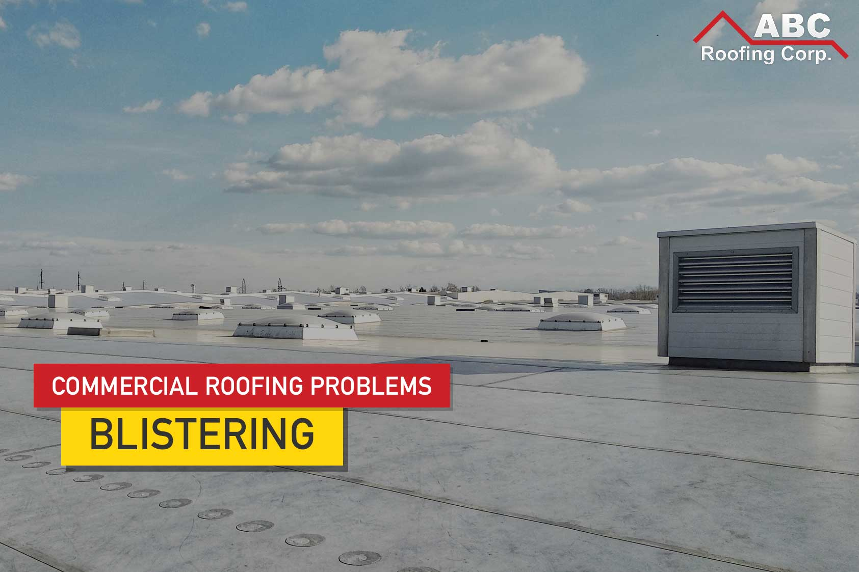 Commercial Roofing Problems: Blistering